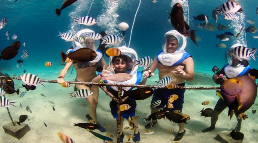 Cek Promo Terkini Bali Hai Aquanauts! Yuk Nikmati Promo Terbaru Wisata Bali Hai Aquanauts, Wisata Berjalan dan Menikmati Keindahan Dasar Laut
