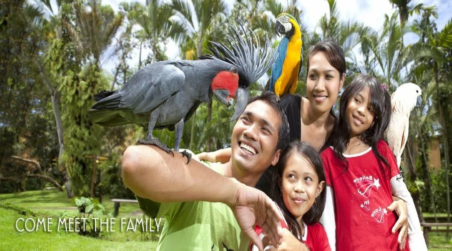 Special Offer! Tiket Bali Bird Park 2020 Hanya Rp 45,000 Per Pax!!