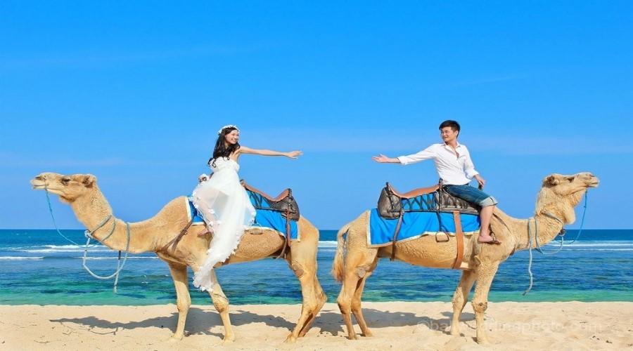 Nikmati Paket Promo Wisata Naik Unta di Bali Bersama Bali Camel Safaris, Beli Online Lebih Hemat!