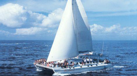 PROMO TERBARU, Jual Voucher Murah Bali Hai Cruises, Harga Hemat Pelayanan Terbaik!