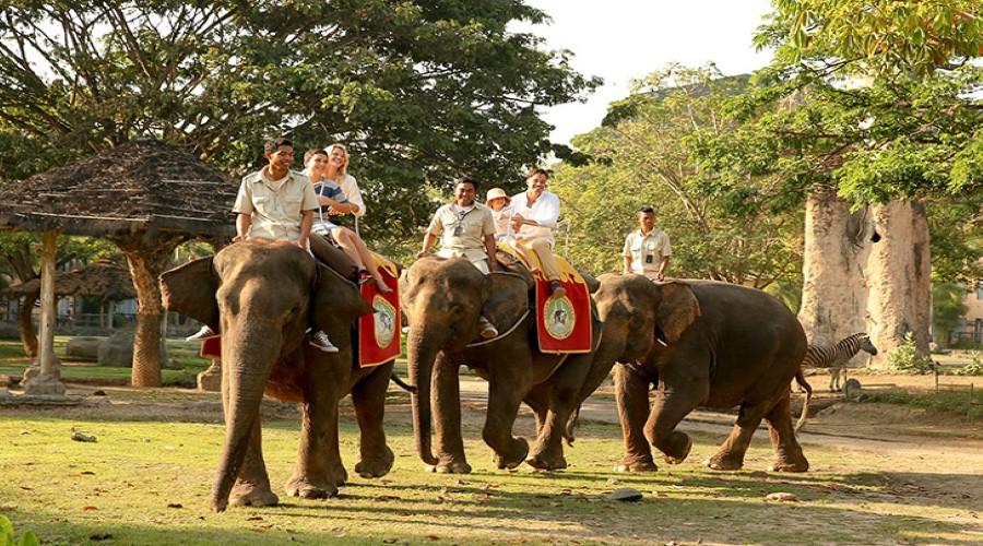 Wow, Harga Tiket Promo Terbaru Berwisata ke Bali Safari & Marine Park Bali