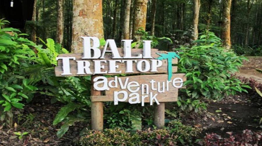Promo Terbaru Wisata Bali Treetop di Kawasan Kebun Raya Bedugul, Bali