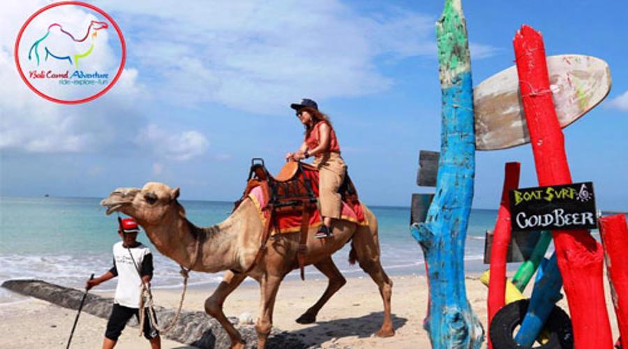 Voucher Wisata Naik Unta | Bali Camel Riding | Bali Camel Adventure | Jaminan Harga Promo Termurah!