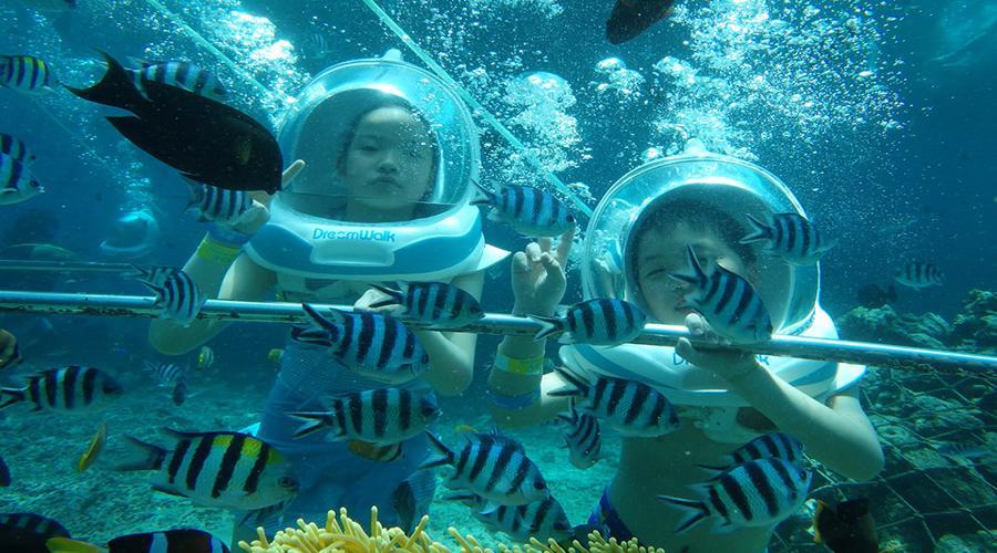 Bali Dream Walk, Wisata Seawalker Lembongan, Menikmati Indahnya Alam Bawah Laut Nusa Lembongan!